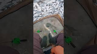27 02 2021 г рыбалка на Печенежском водохранилище