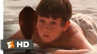 The Black Stallion (6/11) Movie CLIP - The Cobra (1979) HD