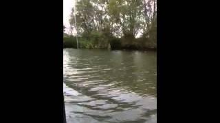 Narrow boat cruise Thames