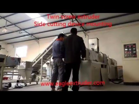Jinan Eagle Food And Fish Feed Pellet  Twin Screw Extruder Machine Side Cutter Device Mounting