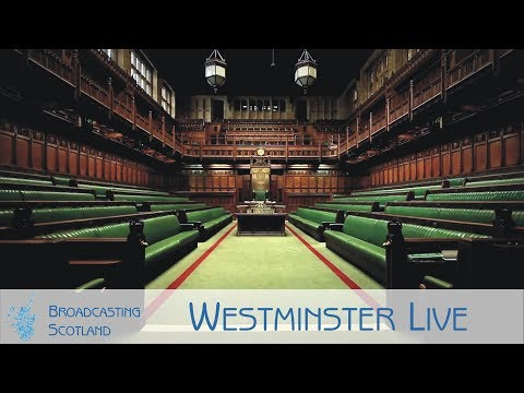 Westminster Live - 21/01/2019