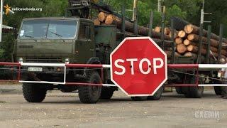 Тиждень в Чорнобилі. Експорт лісу з зараженої зони («СХЕМИ» | ВИПУСК №54)