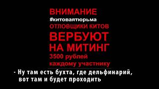 ВЕРБОВКА НА МИТИНГ 3500 РУБ - 1 ЧЕЛОВЕК