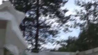 № 60. Усадьба в деревне - лесной ландшафт