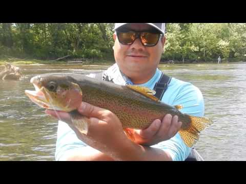2016, Fly fishing Tennessee