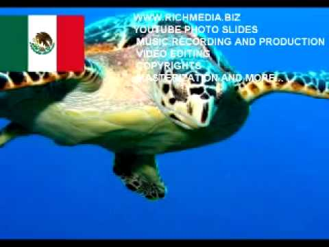 RichMultimedia.biz Presents Mexico