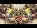 اغنية جمييلة لسفر الطويل chalha aghani amazigh