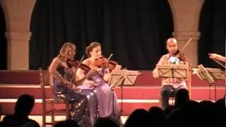 Mozart -IV Allegretto con variazioni.mov