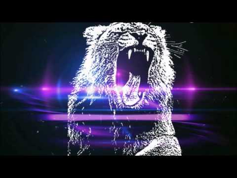 Hardwell vs Martin Garrix, Bassjackers &...