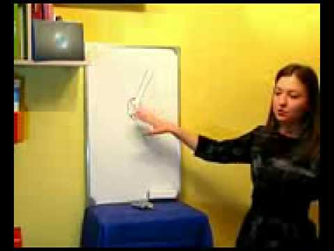 Wellness Презентация продукта компании AGEL.