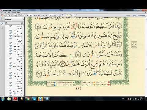 eaalim-bubby---correction-recitation-surah-ya-sin-from-quran.