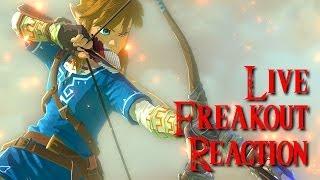 Zelda Wii U E3 2014 Trailer LIVE FREAKOUT REACTION