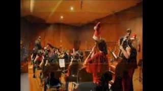 Orquestra de Grao Pofesional e Coros do CMUS de Ourense no Concerto de Nadal 2012.wmv