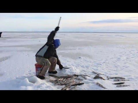 A Winter on the Kuskokwim