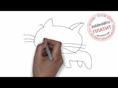 Коты картинки нарисованные  Как нарисовать кота