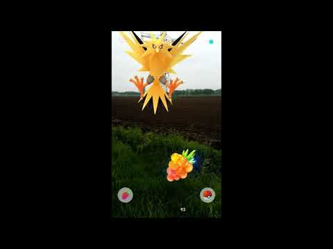 Pokemon Go: Zapdos Field Research 6 (with sound)