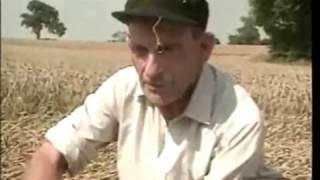 """So you dont believe in Crop Circles"" (Watch This)"