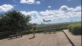 コーギーの小太郎です。 着陸前の大迫力飛行機です。 ブログ『初めての...