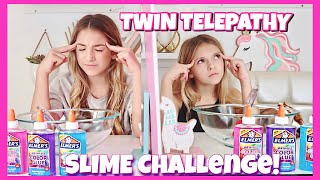Twin Telepathy Slime Challenge | 3 color slime | Quinn Sisters