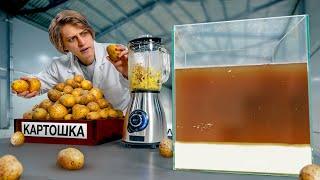 Сколько неньютоновской жидкости в 100 картошках?
