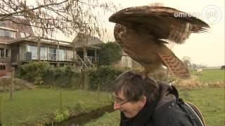 Oehoe Noordeinde moet naar vogelpark:
