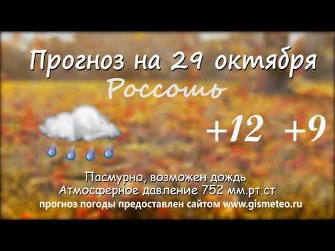 Прогноз погоды на 29.10.2019, Блокнот Россоши