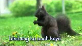 "Dikir Anak Tupai oleh Halim Yazid ""Tabla Remix"""
