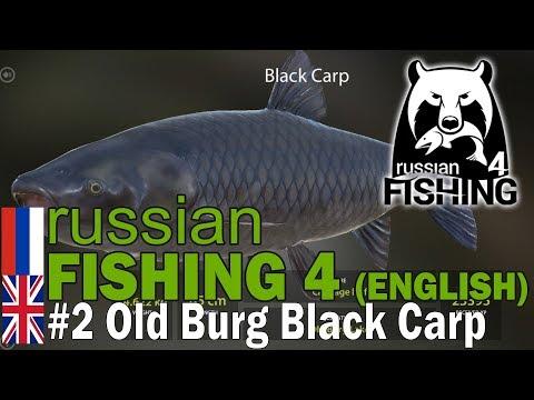 Russian Fishing 4 ENGLISH - 14.6KG 2nd Place Black Carp