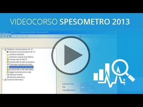 Video corso Spesometro 2013