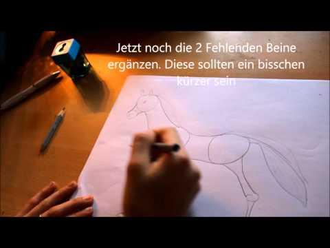 BeMiingo Adventskalender – Türchen Nr. 5 / Ein Pferd zeichnen