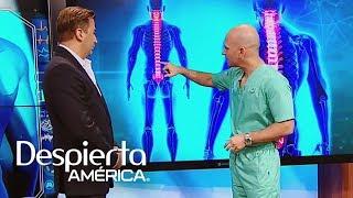 Dolor lumbar espalda en la causas de