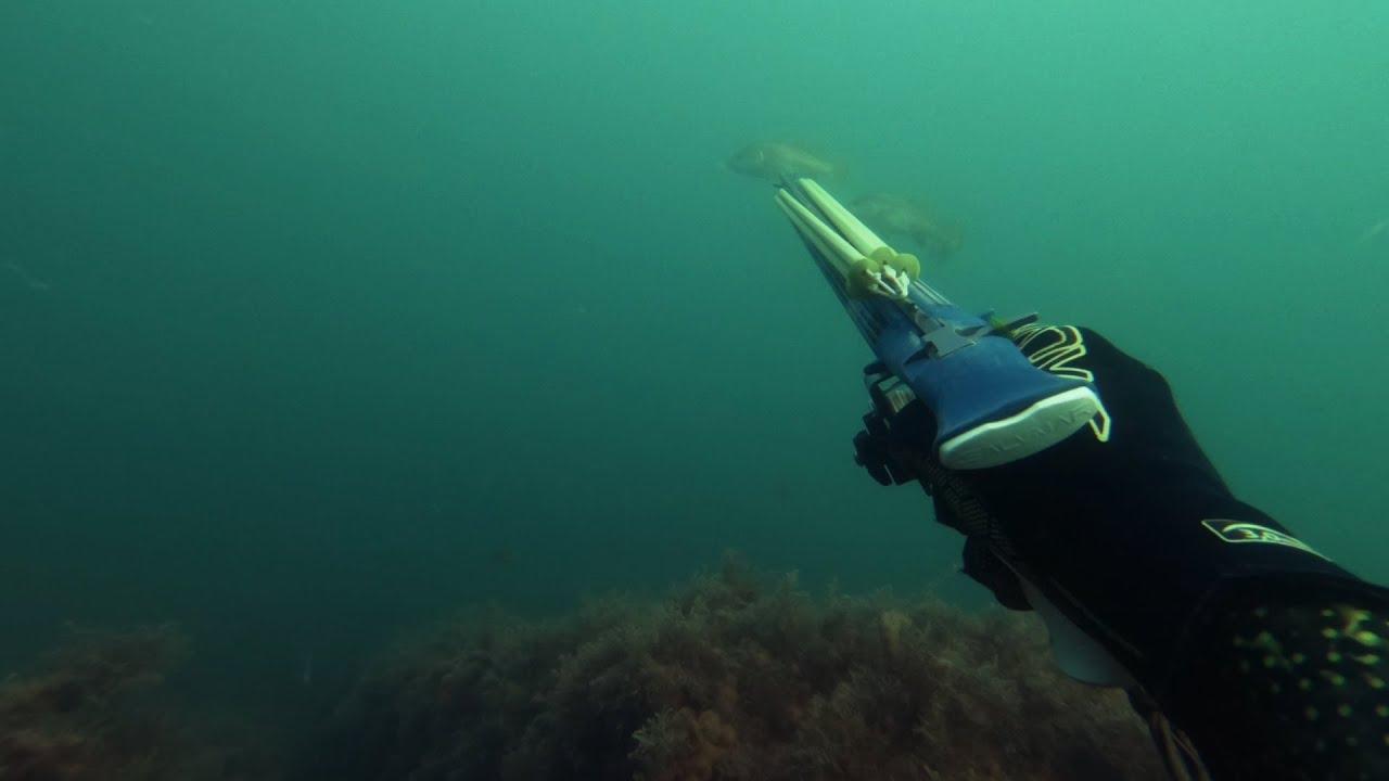 Вот это выход! Подводная охота в Черном море