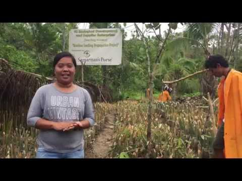 Growing Bamboo Can Change Lives (July 2015)
