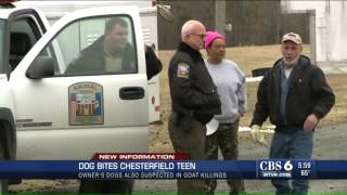 WATCH: Pit bull accused of killing goats and poodle attacks 13-year-old girl