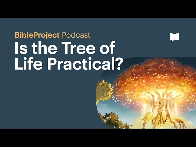 Is the Tree of Life Practical? - BibleProject Podcast
