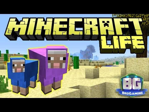 The List - The Minecraft Life - Bro Gaming