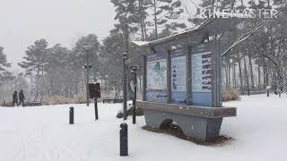 눈오는 날 광교호수공원 산책 2018년12월