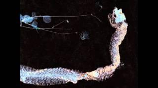 Tenhi - Vähäinen Viotetissa (Lithe In Lilac)