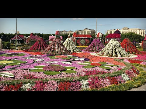 Dubai Miracle Garden & Butterfly Garden Full Tour 2017