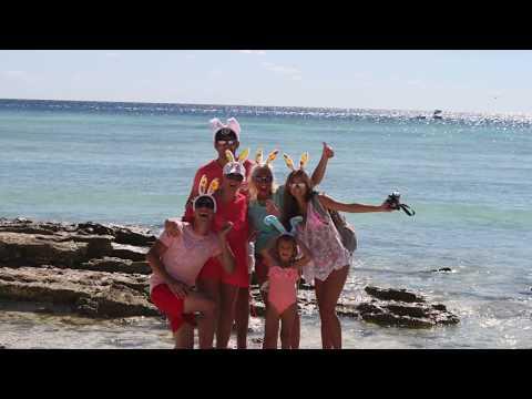 163. Australia - Wyspa Lady Musgrave