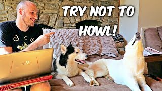 Try Not to Howl!