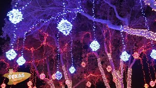 Texas Chronicles: Festival of Lights at Moody Gardens!