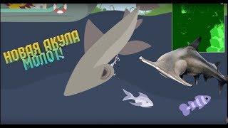 Cat Goes Fishing. КОРАЛОВЕ ОНОВЛЕННЯ! CORAL REEF FISH!