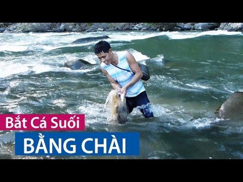 BẮT CÁ SUỐI BẰNG CHÀI (Cast-Net Fishing)