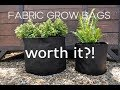 Fabric Pots & Grow Bags: My Thoughts