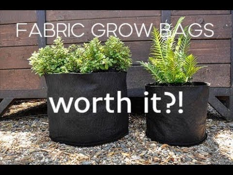 Fabric Pots Grow Bags My Thoughts