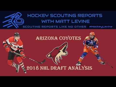 Extremely Deep Future? | Arizona Coyotes 2018 NHL Draft Analysis