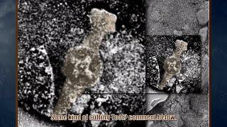 TOOL FOUND ON MARS?