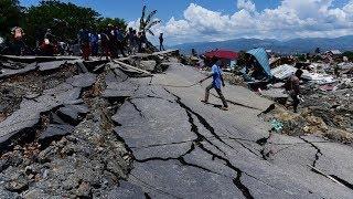 Download Video Rekaman Kepanikan Warga saat Gempa Lombok dan Tsunami Palu MP3 3GP MP4