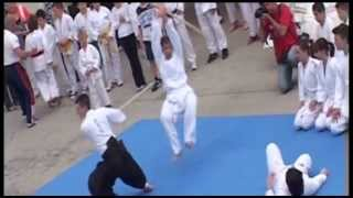 Joza Sensei - Aikido public demonstration in Rovinj (Popolana 2013)